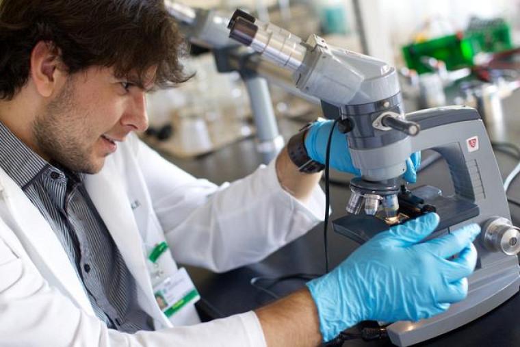 De nouvelles recherches sur le diabète, sur le cancer et sur la douleur chronique voient le jour.